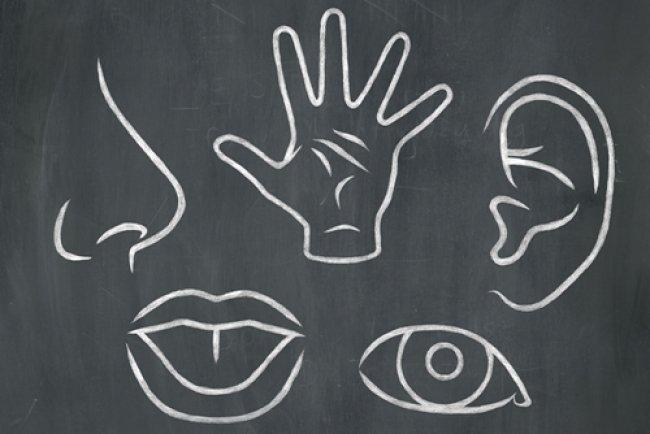 W ŚWIECIE MERCHANDISINGU: Marketing sensoryczny – wsparcie dla merchandisingu