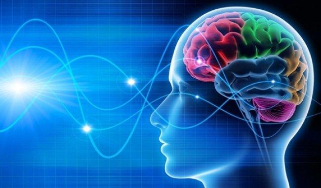 W ŚWIECIE MERCHANDISINGU: Marketing sensoryczny, czyli skuteczny mix bodźców