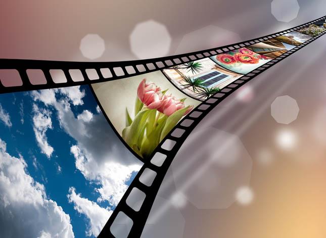 szkolenia filmy szkoleniowe