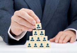 szkolenie team lider