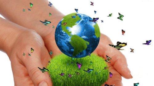 EKOMARKA – budowanie i komunikacja wizerunku produktu, przedsiębiorstwa zorientowanego ekologicznie