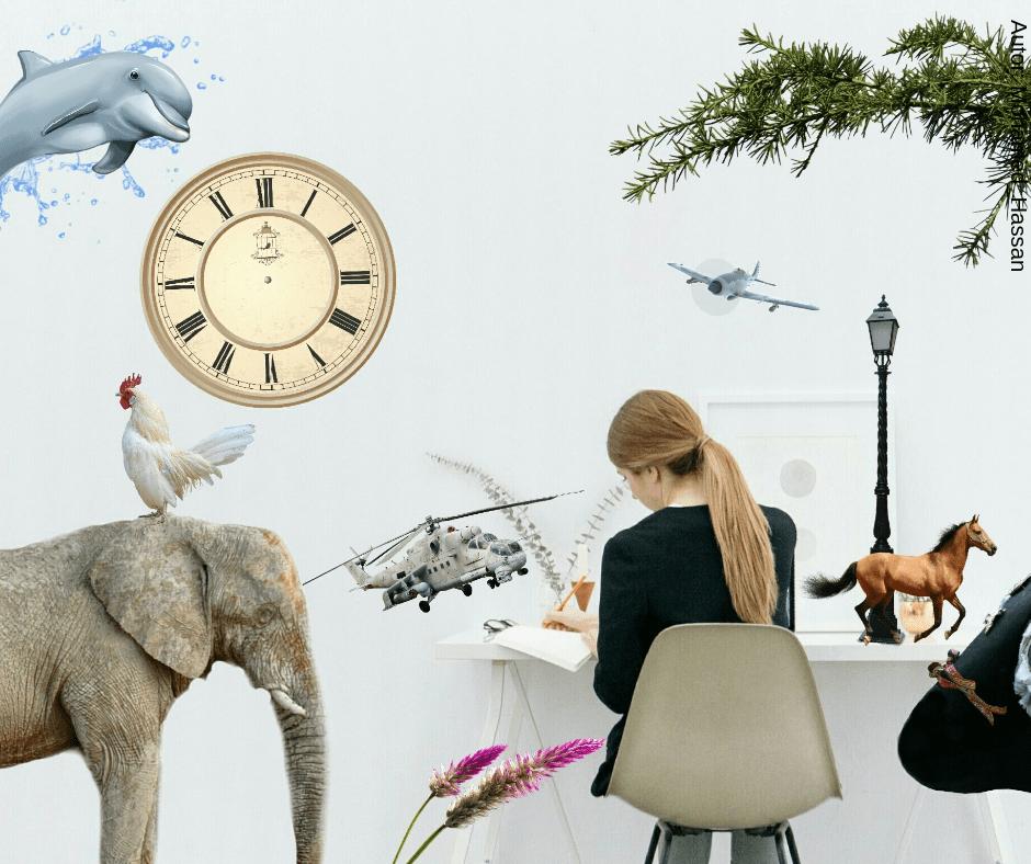 Czy Visual Merchandising rządzi światem?